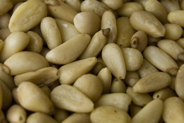 pine-nuts-600x400