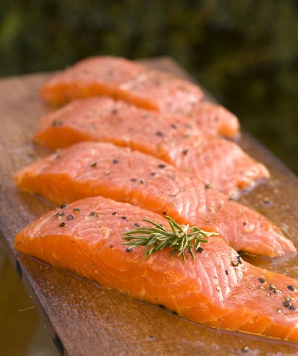 salmon-600x716